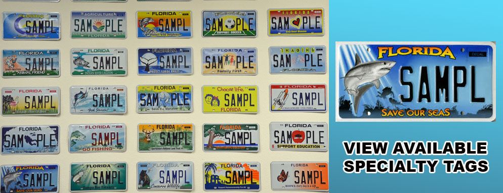 Specialty License Plate Images Website