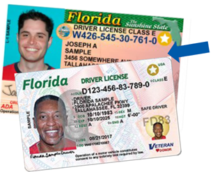 Real ID Compliant Driver License and ID Card Example Photos